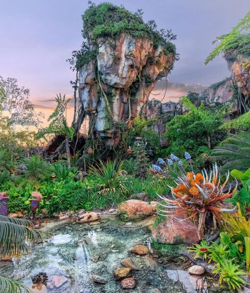 Disney's Animal Kingdom en Walt Disney World | Orlando, Florida Mejores precios, descuentos y ofertas en vacaciones