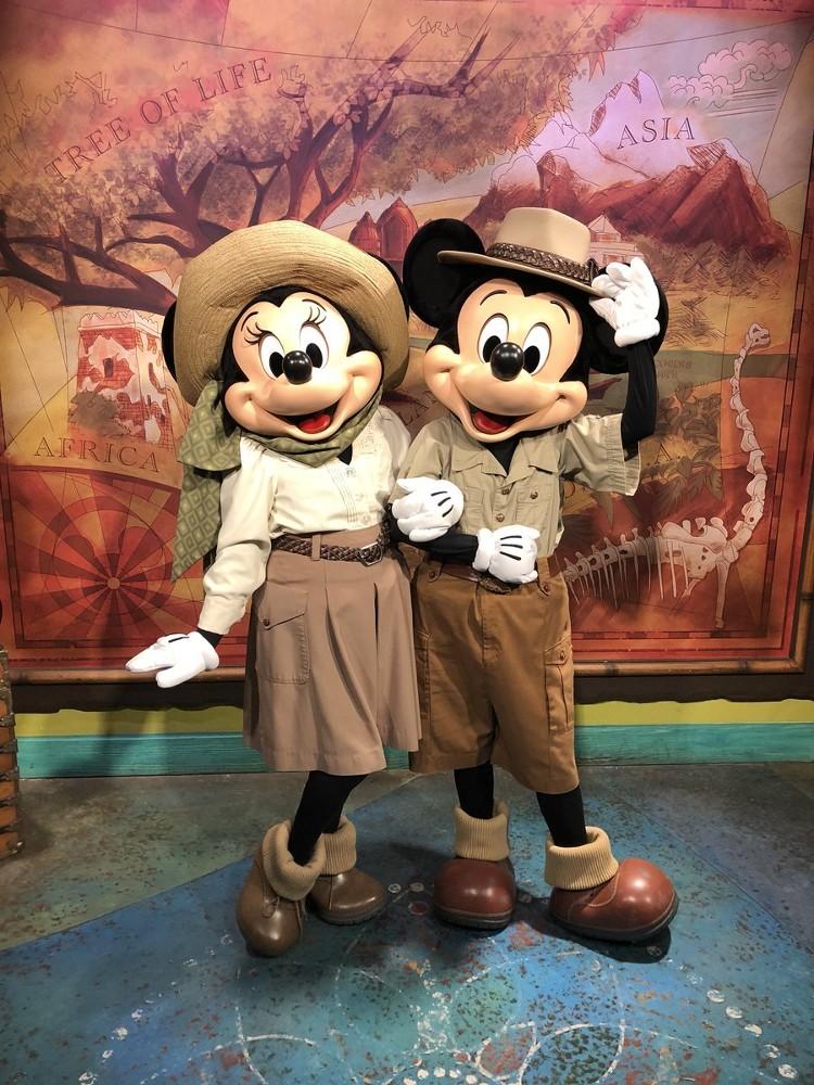 Encuentro con Mickey y Minnie en Disney's Animal Kingdom